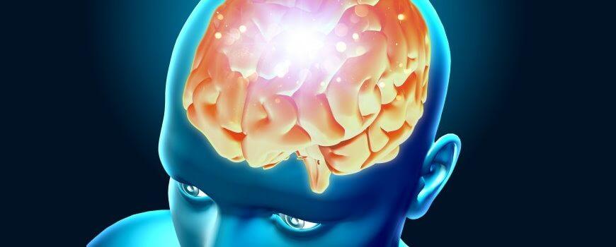 שיטות שיווק למוח