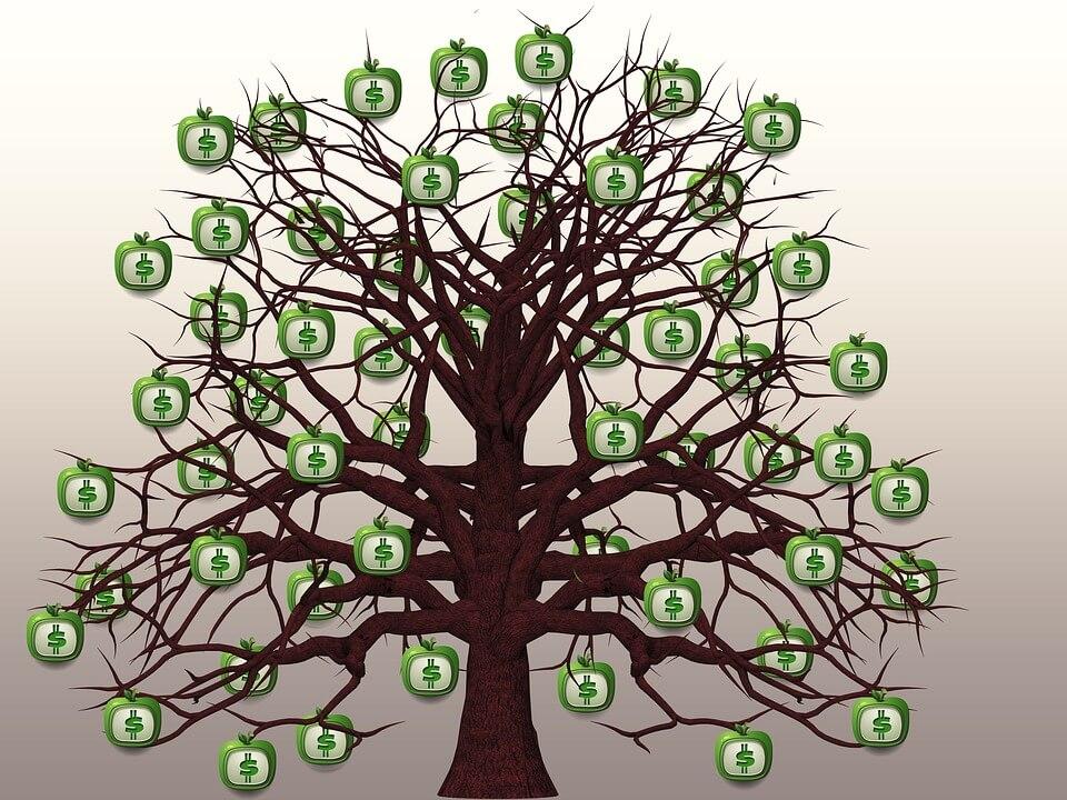 עץ כסף